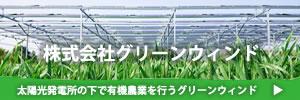 太陽光発電所の下で農業を専門に行うグリーンウィンド
