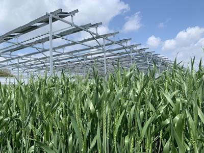 農家を支えるソーラーシェアリング