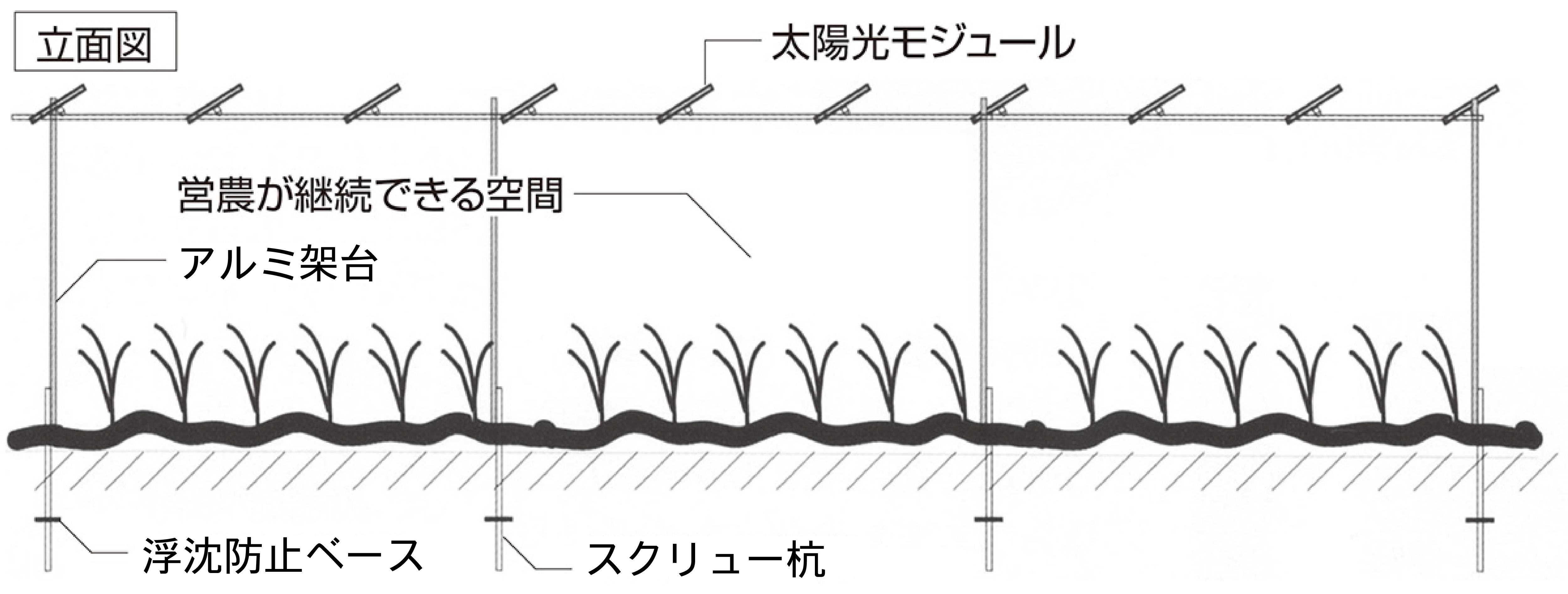 ソーラーシェアリングの原理
