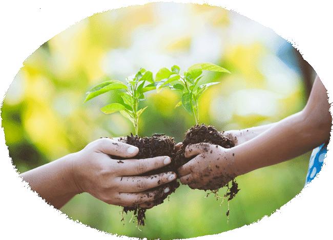 私たちの思い 株式会社グリーンシステムコーポレーション